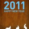 【2011年】謹賀新年